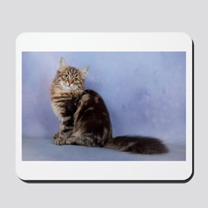 cute siberian tabby cat sideways Mousepad